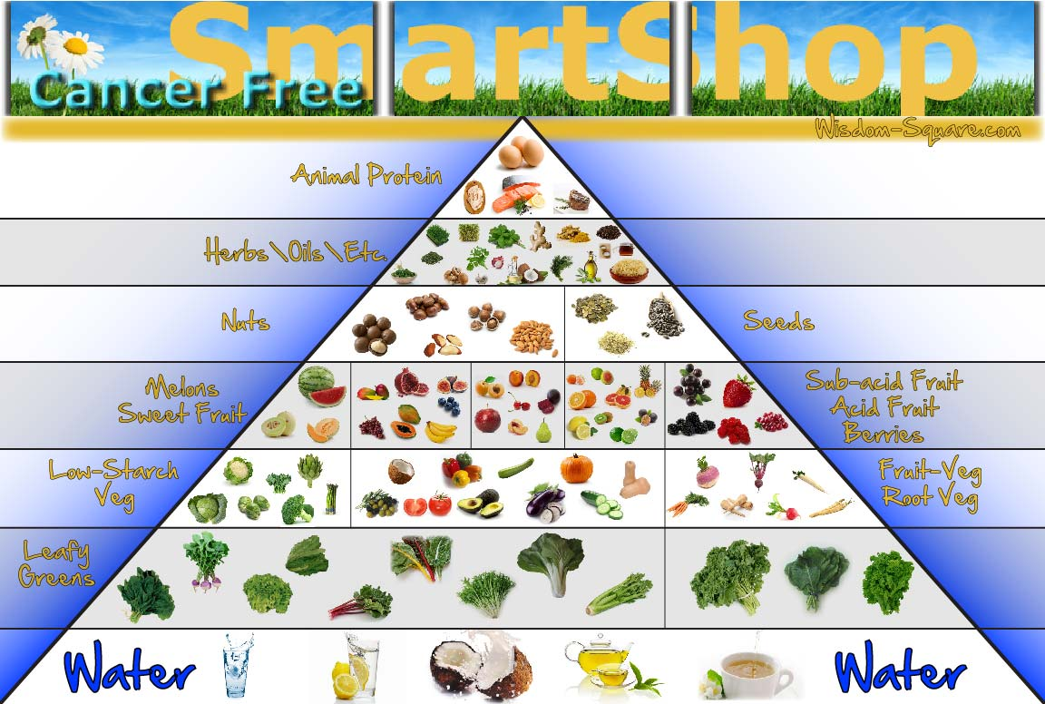 Gnosis Food Pyramid