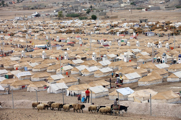 Syria Displacement Camps