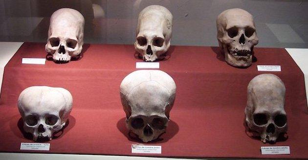 Displayed at Museo Regional de Ica